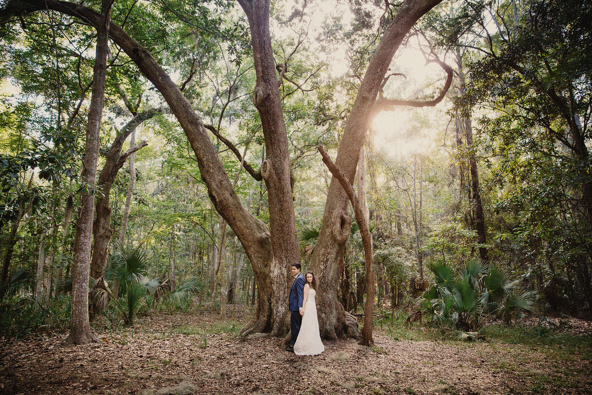 wedding photos savannah moss trees