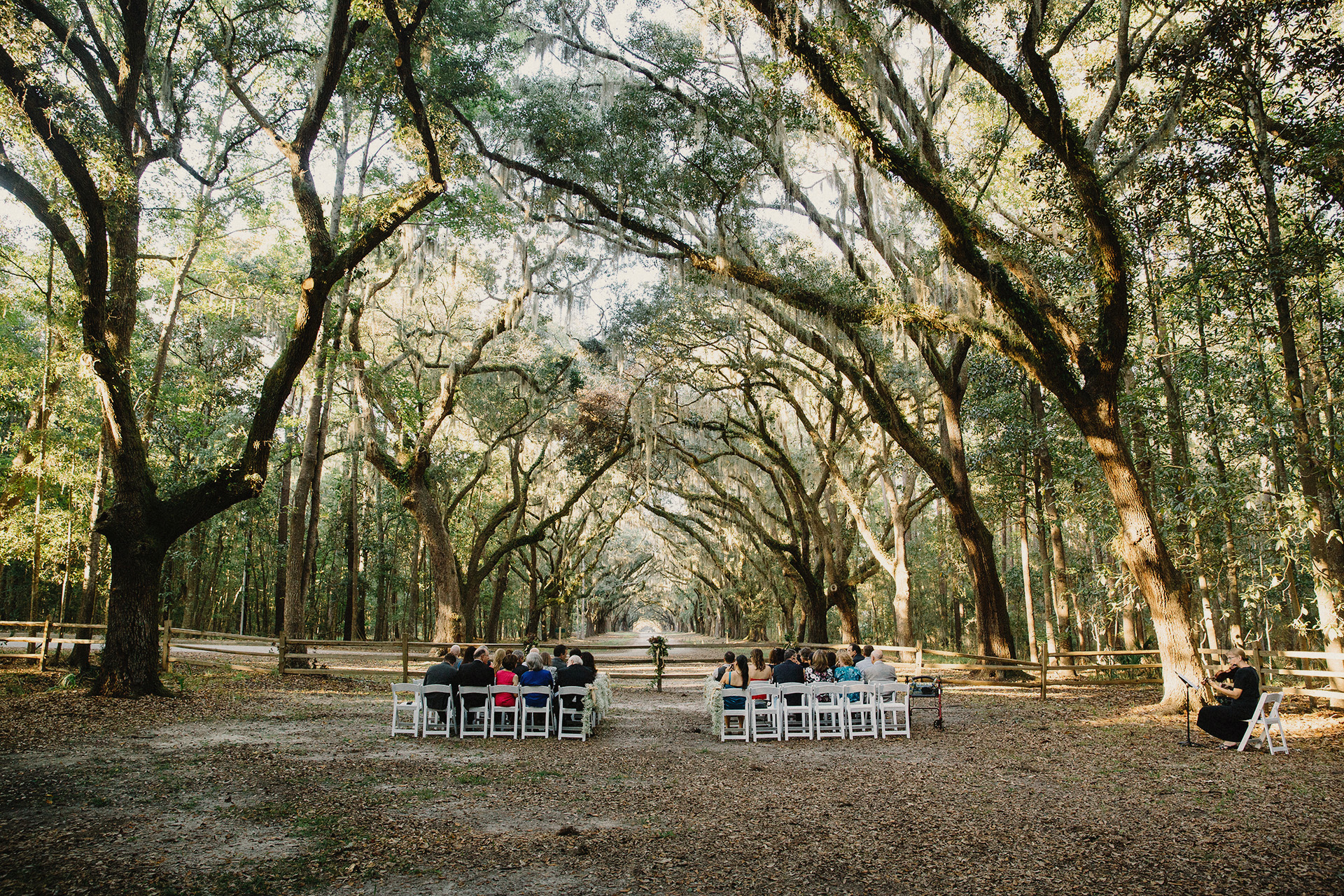 wormsloe wedding savannah