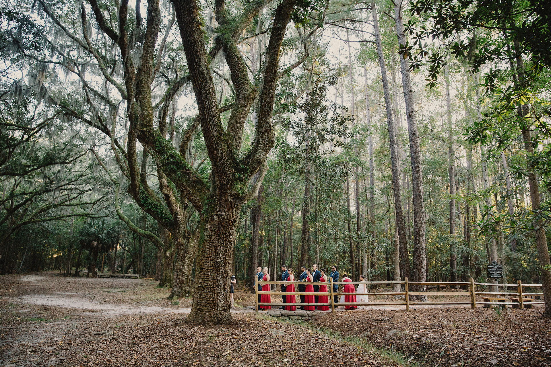 bridesmaides at wormsloe historic site