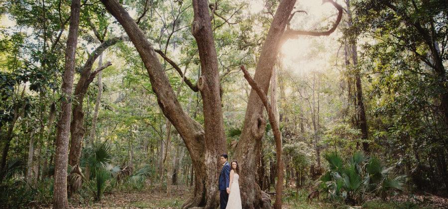 Wormsloe Wedding in Savannah: Jessica + Jose